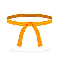 belt-orange